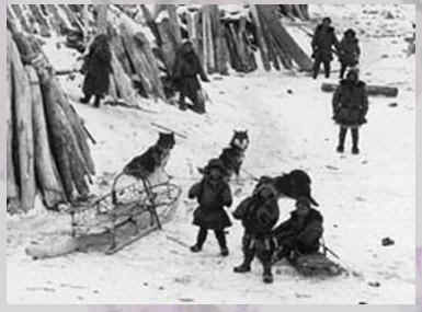 husky history